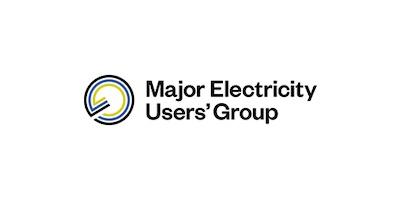 Major electricity users group TDB Advisory