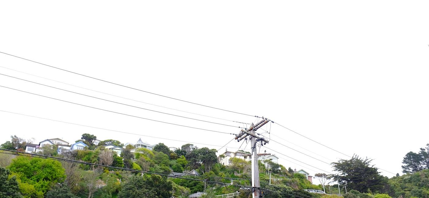 EDB amalgamation electricity sector